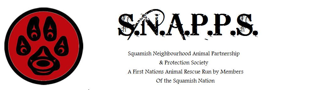 SNAPPS-WEB-HEADER2